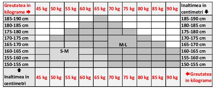 Tabel masuri Filifolli